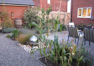 growing vegetables in a small garden